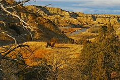 Happy birthday to our 26th president, Theodore Roosevelt! Roosevelt would become known as the country's Conservationist President for his work protecting wildlife and public lands which included establishing the first wildlife refuge and protecting approximately 230,000,000 acres of public land.  Pictured here is Theodore Roosevelt National Park in NorthDakota's Badlands. The park was created to honor Roosevelt and his conservation work. Photo by Brad Starry ...