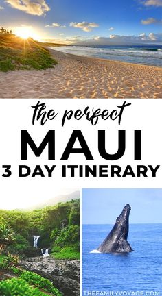 Planning a quick trip to Hawaii? Get the perfect Maui itinerary for 3 days! Even if you're planning 5 days in Maui or longer, you can use this to plan your days off the beach to make the most of your time. #Maui #Hawaii | Maui Hawaii things to do in | Hawaii travel | where to stay in Maui | what to do in Maui Trip To Maui, Hawaii Vacation, Old Lahaina Luau, Hawaii Things To Do, Hawaii Travel Guide, West Maui, Travel Capsule, Honolulu Hawaii, Big Island