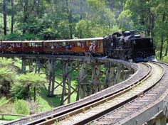Puffing Billy is Australia's premier preserved steam railway and operates every day (except Christmas Day). The journey aboard Puffing Billy takes you through the magnificent Dandenong Ranges, located only one hour east of Melbourne. By Train, Train Tracks, Train Rides, Steam Railway, Train Journey, Trains, Victoria Australia, Melbourne Australia, Australia Travel