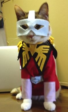 「nyaririririnさん@nyaririririn: うちの母がうちの猫用にコスプレ服を作ってた。シャア・アズナブルのコスプレ!・・・・うちのねこは他のとこの子より、3倍バカ! http://p.twipple.jp/wsRkc  http://p.twipple.jp/3lWyy」(ついっぷるフォト)