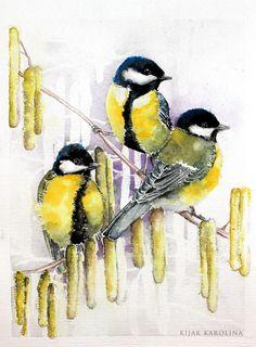 Great Tits - watercolors from www.karolinakijak.com
