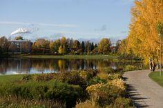 Rovaniemi city autumn colors. Photo Aili Alaiso