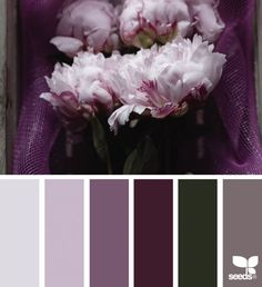 This would be a lovely color palette for a guest bathroom or powder room! { flora hues } image via: Colour Pallette, Colour Schemes, Color Combos, Color Patterns, Color Lila, Mauve Color, Palette Design, Design Seeds, Color Swatches