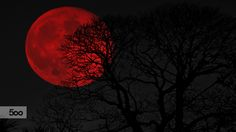 blood moon! by kostas tsek / 500px