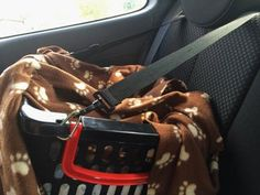 Cheap Safe Dog Car Seat : 10 Steps (with Pictures) - Instructables Dining Room Chairs Ikea, Blue Velvet Dining Chairs, Farmhouse Table Chairs, Compact Table And Chairs, Garden Table And Chairs, Pet Booster Seat, Bike Challenge, Truck Bed Camping, Pet Dogs