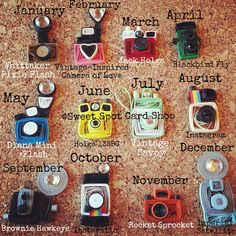 cute vintage cameras for 12 months - by Sandy of Sweet Spot Card.