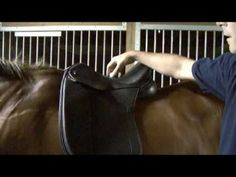 Saddle Fitting in 9 Steps - Step 1 - Balance - by Schleese Saddlery Service