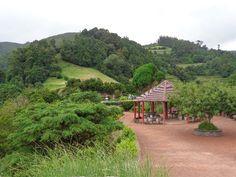 O Miradouro da Ponta da Madrugada situa-se no Concelho Nordeste, Ilha de São Miguel, Açores.