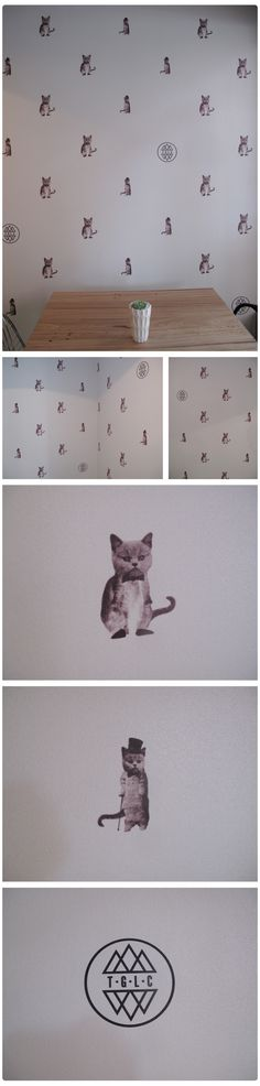 The-Good-Luck-Club5. not sure i would actually wallpaper kittens in my house, but its still adorable :)