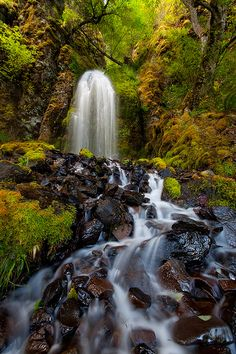 Columbia River Gorge, Pacific Northwest (Washingotn, Oregon) USA