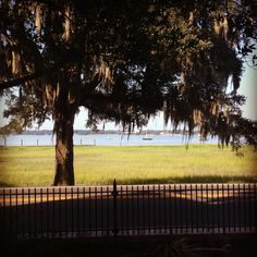 View from the side yard, perfect wedding venue.  Beaufort, SC.  Anchorage 1770