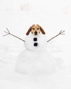 Maddie snowgirl