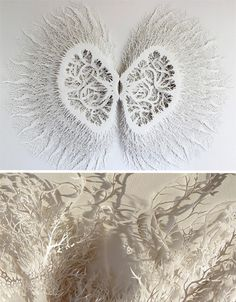 What starts as a scientific study takes on a life of its own, guided only by the imagination of artist Rogan Brown as he transforms a sheet of paper into a masterful sculpture with thousands of tiny incisions.
