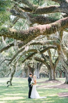 Pristine Elegance at Boone Hall Plantation on Borrowed & Blue.  Photo Credit: Aaron and Jillian Photography
