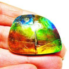 Ammolite Large Polished Hand Specimen 7LHPLS$349.99#ammolite #korite #ammonite #fengshui #canada #canadagems #canadianammolite #gemstones #jewelry #jewelryaddict #photooftheday #jewelryoftheday #jewelrygram #colorful #gem #gems #opal #minerals #natureinspired #rainbow #alberta #fossil #Alaska #followersofinstagram #isellrocks #art #handmade #lapidary #madeinmontana #ammolites Ammonite, Feng Shui, Alaska, Fossil, Minerals, Cuff Bracelets, Opal, Canada, Rainbow