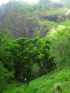 So. Many. Steps. Haiku Stairs in Hawaii