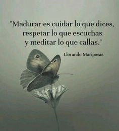 Inspirational Good Morning Messages, Amazing Inspirational Quotes, Inspirational Phrases, Spanish Phrases, Spanish Quotes, Positive Phrases, Positive Quotes, Life Experience Quotes, Reflection Quotes