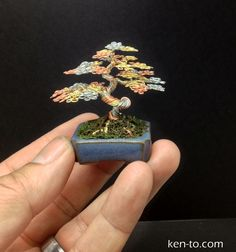 3 tone mame wire bonsai tree sculpture by Ken To