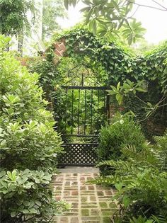 Wrought Iron Gate Ivy  Gates and Fencing  Grimball Cotterill Landscape Architects  Columbia, SC
