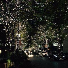 Tweet phương tiện bởi 小櫻あやな (@a_kozakura) | Twitter