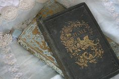 the infernal devices Old Books, Antique Books, Vintage Books, Paris Chic, Maleficarum, Yennefer Of Vengerberg, Under Your Spell, Book Aesthetic, The Infernal Devices