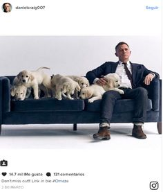 Daniel Craig's new ad Who knew out favorite James Bond had a soft side? Daniel Craig hugged these adorable puppies in a new video to promote his partnership with the online philanthropic platform Omaze,  http://www.iigers.com/blog/daniel-craigs-new-ad/ #InstagramNews #iigers #buyrealinstagramfollowerscheap