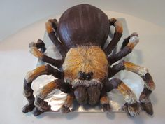 Tarantula Cake A tarantula cake I made to celebrate two people getting jobs. Not entirely sure what a tarantula had to do with it, but they. Halloween Appetizers, Halloween Desserts, Halloween Food For Party, Halloween Cakes, Halloween Treats, Halloween Dinner, Snake Cakes, Spider Cake, Creepy Food