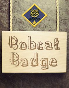 Scouts Of America, Boy Scouts, Badge, Boy Scouting, Scouts, Badges