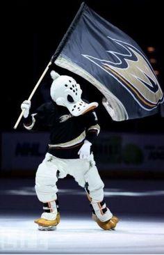 Wild Wing - #1 NHL mascot