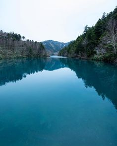 . 大沼池 . . 志賀高原にある大沼池です鮮やかなブルーの湖面は神秘的で素晴らしいかったですただ片道徒歩で一時間半4km一眼担いでは厳しかった . #志賀高原 #大沼池 #長野 #ファインダー越しの私の世界 #東京カメラ部 #湖 #自然 #team_jp_東 #igersjp #lovers_Nippon #igersjp #photooftheday #ig_japan #IGersJP_ #_international_flowers_ #landscape #landscape_captures #lake #blue #spring #naturelovers #nature #rainbow_petals #travel #travelgram #japan #nagano #travelphotography by koji_ko555
