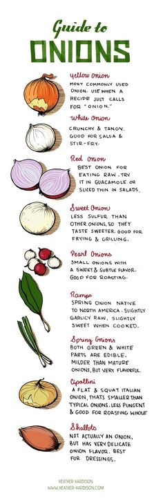 Guide to Onions (Cooking Tutorials, Cooking Tips) Cooking 101, Cooking Recipes, Healthy Recipes, Cooking Hacks, Cooking Onions, Cooking Ideas, Asian Recipes, Healthy Baking Substitutes, Baking Substitutions