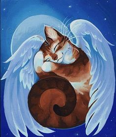 Angel Kitty Sleeping by Nico Niemi I Love Cats, Crazy Cats, Cute Cats, Gato Angel, Pet Loss, Rainbow Bridge, Pet Memorials, Cat Drawing, Beautiful Cats