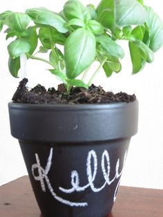 Herb in a chalk board painted pot - great gift idea to a budding gardner