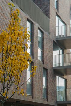 The award winning Brentford Lock West development designed by Duggan Morris Architects which uses Freshfield Lane Selected Dark Facing bricks.