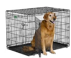"""MidWest iCrate Double Door Folding Metal Dog Crate w/ Divider Panel, Floor Protecting """"Roller"""" Feet & Leak-Proof Plastic Tray; x x Inches, Large Dog Breed Large Dog Crate, Large Dogs, Small Dogs, Le Plus Grand Chien, Dog Crates For Sale, Dog Crate Sizes, Wire Dog Crates, Pet Crates, Dog Supplies"""
