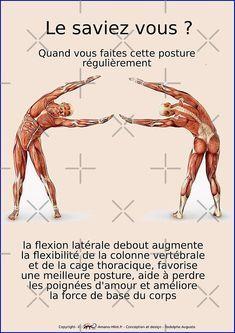 Vinyasa Yoga, Namaste Yoga, Yoga Positions, Qigong, Asana, Excercise, Back Pain, Pilates, Medical