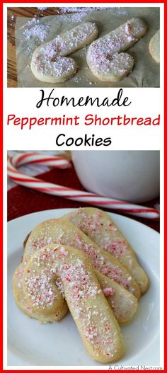 These yummy peppermint shortbread cookies have light icing and crushed peppermint on top- the perfect holiday combination! You've got to give these a try!