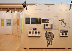 """THE TIME OF THE WOLVES """"the tale of their return"""", December, 2014 MUSE Science Museum Trento"""