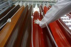 Photobioreactor boosts blue biotech sector - ALGAE ASIA NEWS
