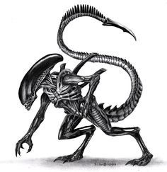 ***RIP H. R. Giger. May 12th 2014*** Finally decided to draw a Xenomorph! (From Alien, Aliens and the other films!) Done within a day, looked at loads of photos and references as well as using my m...