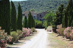 Agriturismo LA VALENTINA - Orbetello Toscana Italy (maremma, tuscany, farm holidays) - http://www.agriturismoverde.com/ita/agriturismo/lavalentina