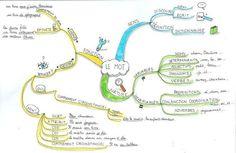 Des cartes heuristiques pour le CM1 et le CM2 Cycle 3, Kids Learning, Bullet Journal, Lectures, Coin, Recherche Google, Schools, Mental Map, Worksheets