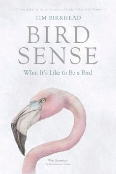 Bird Sense: What It's Like to Be a Bird by Tim Birkhead http://www.amazon.com/dp/1620401894/ref=cm_sw_r_pi_dp_QPV0wb0PMEZHJ