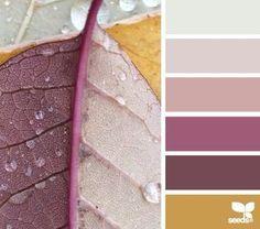 Pretty color combination...