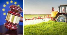 Franska bönder hotar att ta glyfosatfrågan till domstol