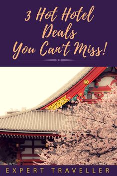These 3 Hot Hotel Deals are not to be missed! Available in Australia, New Zealand, Asia, Europe and the US.You're sure to find a deal for you! Hotel Deals, New Zealand, Asia, Europe, Australia, Travel, Viajes, Destinations, Traveling
