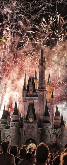 "Watching ""Wishes"" Over Cinderella Castle l Walt Disney World l Ria"