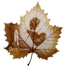 Creative and Unique Examples of Leaf Carving Art Pencil Carving, Autumn Tattoo, Exotic Art, Autumn Painting, Gourd Art, Weird Pictures, Leaf Art, Art Forms, Amazing Art