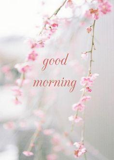 good morning card beautiful pink flowers