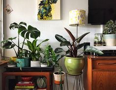 Scott Cain is tropicoloco! Words by Georgina Reid. Images by Scott Cain. My Living Room, My Room, Interior Decorating, Interior Design, Dream Apartment, House Rooms, My Dream Home, Decoration, Room Inspiration